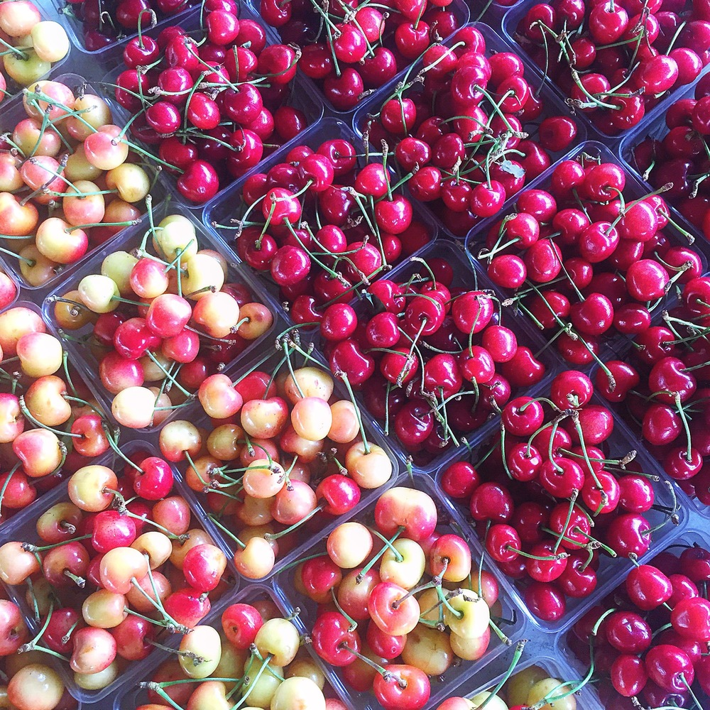 Cherries from the Grove Street Farmers Market in Jersey City, NJ.